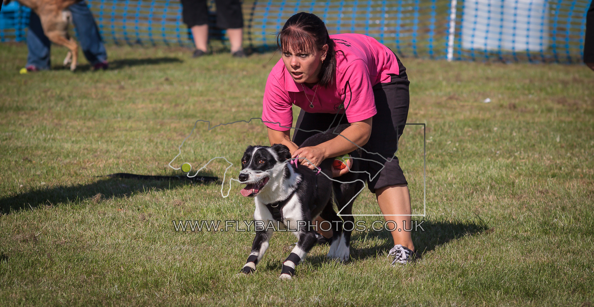 Tails we win flyball release