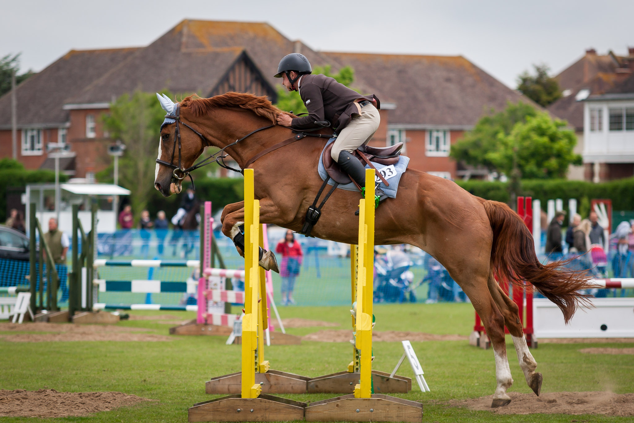 Bexhill Horse Show